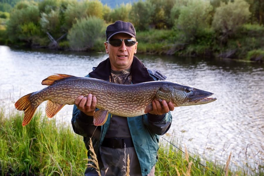 44 Tips & Complete Northern Pike Fishing Guide for Beginners
